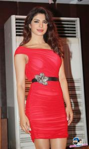 babli-badmaash-song-launch-18