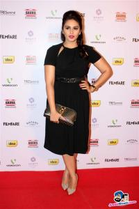 filmfare-awards-2013-15
