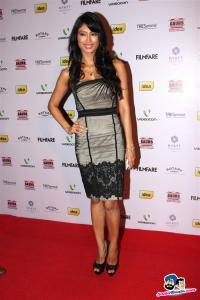 filmfare-awards-2013-24