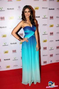 filmfare-awards-2013-38